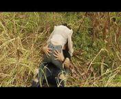 Dirty Hari - First Kissing Scene of Simrat Kaur from dalljiet kaur xxx